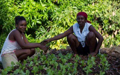 Esperienza locale e tecniche innovative per uno sviluppo sostenibile