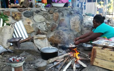 Zero Carbon: the Kukula project to counter the negative impacts of domestic pollution